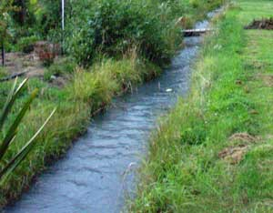 water-stream-garden-water-race